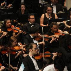 Seis jóvenes estudiantes disputarán la final  del Concurso Vivaldi