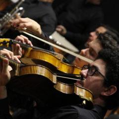 Centro Nacional de la Música requiere los servicios de Profesor (a) de viola