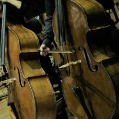 Centro Nacional de la Música requiere los servicios de Profesor (a) de Contrabajo